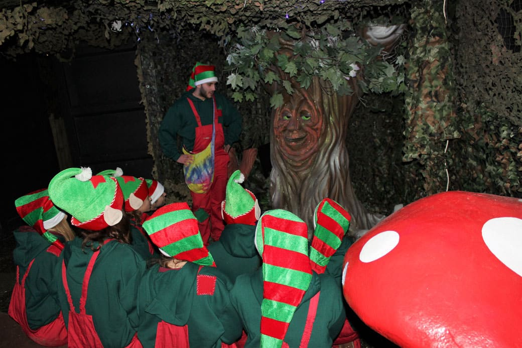 Elves-with-Wilbur-the-talking-tree