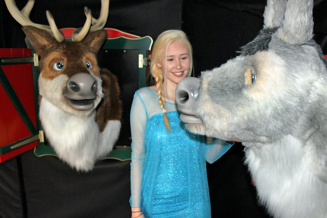 Arthur The donkey With Elsa And Friends