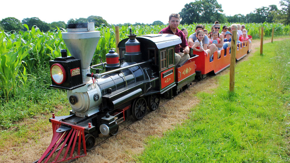 Outdoor-train-rides-with-families-image-1
