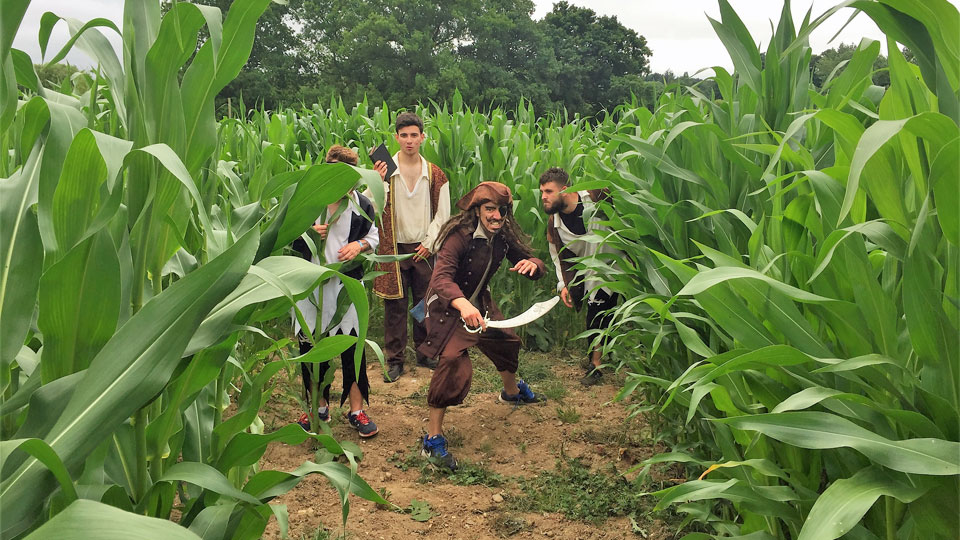 Pirates-in-the-maize-maze-image-1