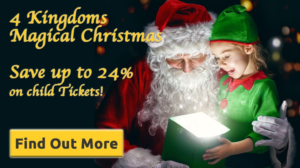 Magical Christmas Family Experience 2017