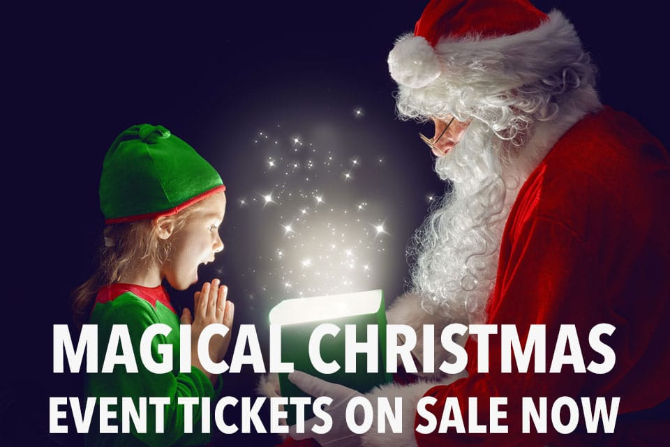 Magical Christmas Event banner 2018