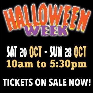 Halloween-Week-Web-Image