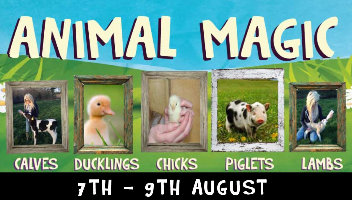 Animal Magic Day 7th to 9th August 2019