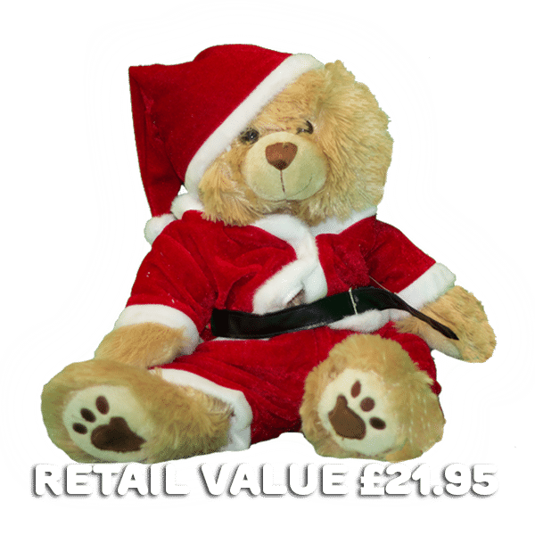Build-a-bear-for-christmas-special-present