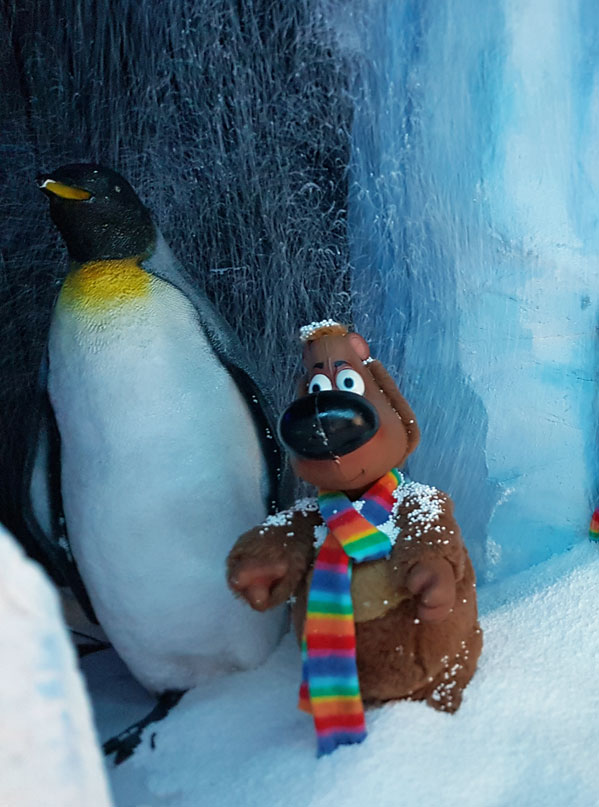 North pole penguins