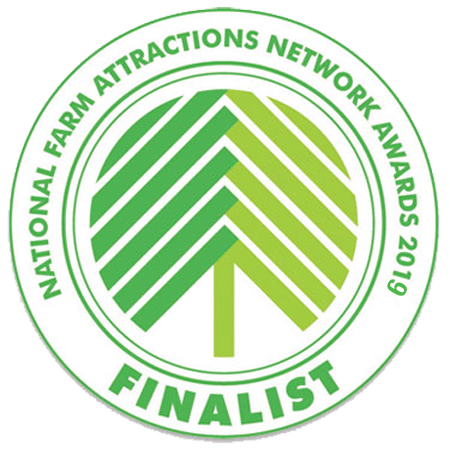 NFAN-Awards-2019-Finalist-logo