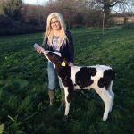 Feeding the calf at 4 kingdoms